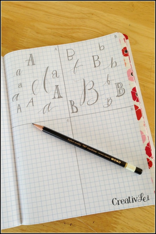 Create a grid on your notebook page for an area for daily drills and practice for improving hand-lettering and penmanship. -CreativLEI.com